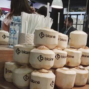 Corporate Branding - Blaine Events