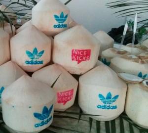 Corporate Branding - Adidas