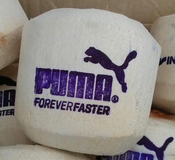 Corporate Branding - Puma