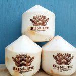 Corporate Branding - Sun Life